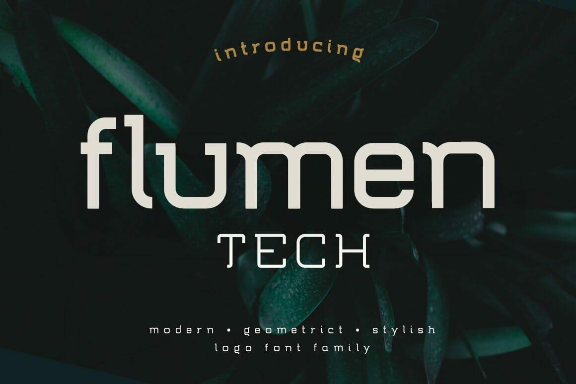 flumen slide30