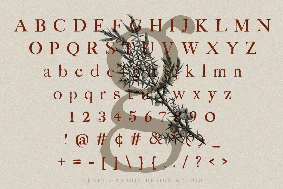 juniper Vintage Serif Font  Letters